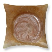Marble World Throw Pillow