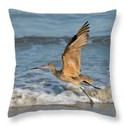 Marbled Godwit Taking Off On Beach Throw Pillow