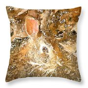 March 025 0 Rabbit Eyes Looking Throw Pillow
