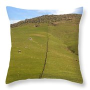 Marching Fence Throw Pillow
