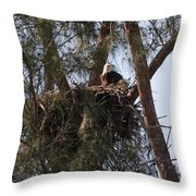 Marco Eagle - Protecting Its Nest Throw Pillow