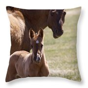 Mare And Foal   #0659 Throw Pillow