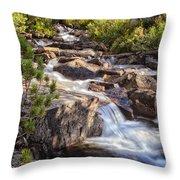 Marie Lakes Stream Throw Pillow