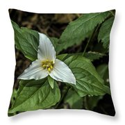 Marie's Trillium Throw Pillow