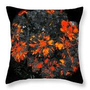 Marigold Fire Throw Pillow