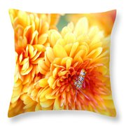 Ailanthus Webworm Visits The Marigold  Throw Pillow