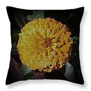 Marigold Digitized Throw Pillow