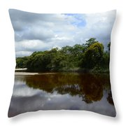 Marimbus River Brazil Reflections 4 Throw Pillow