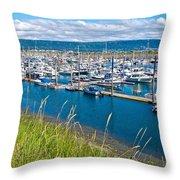 Marina Along Homer Spit-ak Throw Pillow