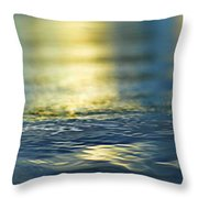 Marine Blues Throw Pillow by Laura Fasulo