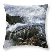 Marine Iguana Pair In Surf Galapagos Throw Pillow