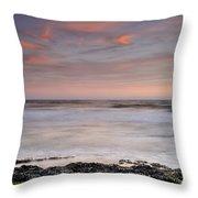 Marine Life Throw Pillow
