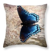 Mariposa Azul Throw Pillow