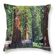 Giant Sequoias Mariposa Grove Throw Pillow