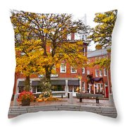 Market Square Harvest - 2009 Throw Pillow