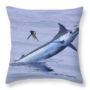 Marlin Magic Throw Pillow