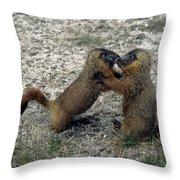 4m09150-02-marmot Fight Throw Pillow