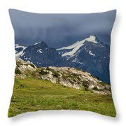 Marmot Meadow Throw Pillow