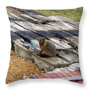 Marmot Resting On A Railroad Tie Throw Pillow