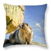 Marmot Throw Pillow