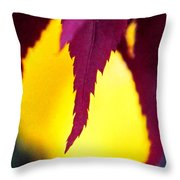 Maroon And Yellow Throw Pillow