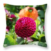 Maroon Flower Throw Pillow