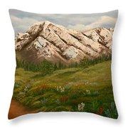 Maroon Trail Splendor Throw Pillow