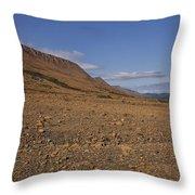 Mars On Earth Throw Pillow