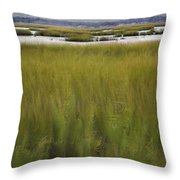 Marsh At Milford Point Throw Pillow