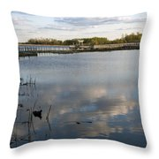 Marsh Boardwalk Throw Pillow