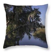 Marsh Creek Throw Pillow
