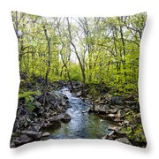 Marsh Creek In Spring Throw Pillow