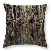 Marsh Dwellers Throw Pillow