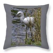 Marsh Fishing Throw Pillow