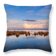 Marsh Land Throw Pillow