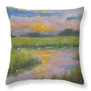 Marsh Light Throw Pillow