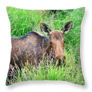Marsh Moose Throw Pillow