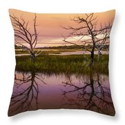Marsh Oil Painting Throw Pillow