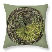 Marsh Orb Throw Pillow