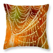 Marsh Pearls Throw Pillow by Carol Groenen