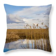 Marsh Reed Throw Pillow