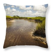 Marsh River Throw Pillow