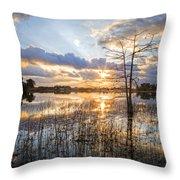 Marsh Sunrise Throw Pillow