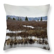 Marsh Tones Throw Pillow