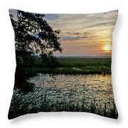 Marsh View Throw Pillow