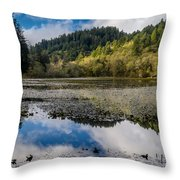 Marshall Pond In Autum Throw Pillow
