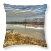 Marshlands 2 Throw Pillow