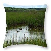 Marshlands Around Hilton Head Island Throw Pillow