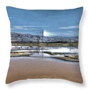Marshlands Throw Pillow