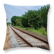 Marshlink Line Rye Throw Pillow